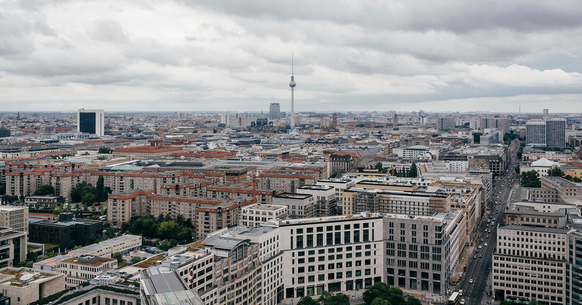 DINA Immobilien Consult Berlin, Profil